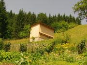 Unser Bienenhaus mit Naturgarten