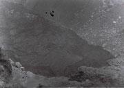 昭和25年7月22日(1950年)
