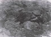 昭和25年8月25日(1950年)