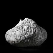 Almerinda Gillet, grès chamotté blanc