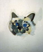 Blue eyes - acrylique -