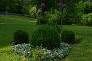 Privatgarten: Durch wiederkehrende Formen und gezielt eingesetzte Blattstrukturen eine eigene Pflanzbeetkomposition gestalten.