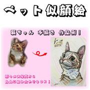 ペット似顔絵。ネコちゃん手描き作品例