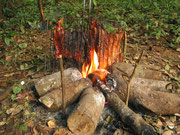 Aïmara grillé