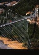 【谷瀬の吊橋】 奈良県の最南の十津川村上野地にある日本最長の鉄線の吊橋。高さ:54m、長さ:297m。1954年に架橋された。中央部に幅約80cmの板が敷いてあり、その上を歩くが、吊橋中央部では、かかり揺れる。