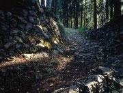 【十津川・熊野古道小辺路石畳】 日本一広い村「十津川村」の面積は、672平方キロもあり、奈良県の約1/5を占める。その中に、世界遺産・熊野古道の1つ「小辺路(こへじ)」が通っている。このルートは、真言宗の総本山である高野山(和歌山県)から「野迫川村」「十津川村」を経由して熊野本宮へ向かっている。