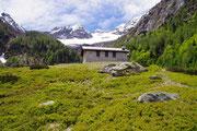 Alpe di Gariss 1422 m (Valle di Moleno)
