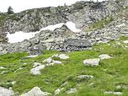 Mött (Alp della Crosa) 2000 m - Val Calnègia (Foroglio)