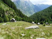 Alpe di Pozzo 1863 m - Valle Malvaglia