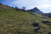 Alpe Logone 1184 m