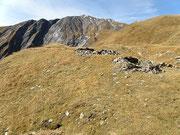 Alpe Coroi 2275 m - Valle di Larciolo