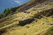 Alpe Sasso Léi 2041 m (Leventina)