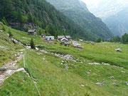 Alpe della Bolla 1847 m - Valle Malvaglia