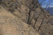 Discesa per i Monti di Gottro