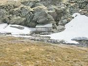 Alpe Pièi - Valle di Blenio 2246 m
