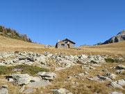 Alp di Campel Alt 2044 m (Val de Campel) (GR)