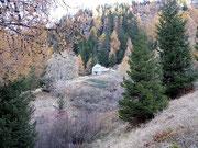 Alp di Campel Bas 1720 m (Val de Campel) (GR)