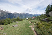 Alpe Motarina 1578 m (Valle d'Iragna)