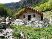 Alpe Repiano - Valle d'Iragna 1245 m