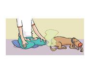 Illustration von Frank Schulz Art für Dirk Grosser im Kailash Verlag zu Der Buddha auf vier Pfoten (Mann im Lotussitz und Hund hat schön gefurzt)