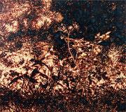Heidberg. Kraut 2, 2014, Öl auf Leinwand, 115 x 130 cm