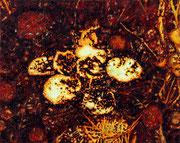 Heidberg. Kleinwuchs 1, 2015, Öl auf Leinwand, 40 x 50 cm