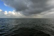 Copyright Jules Toussaint / Foto im offenen Meer entstanden