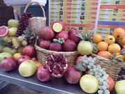Frutos de Israel