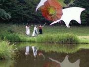 Dragon au dessus de l'étang avec reflets