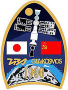 Mission patch Sojus TM-11