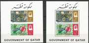 Qatar souvenir sheets 3Ac and 3Bc, Gemini rendevouz blue overprinted, issued 900 and 800 items