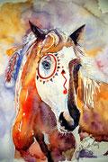 Magic Indian Horse