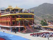 Pema Ts'al Sakya Monastic Institute