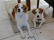 Arrigo mit Schwester Ashanti