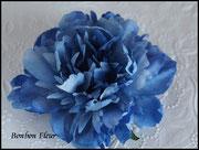 ピオニア*ブルー