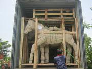Containerbeladung Yogyakarta root chip horses