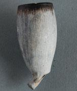 Gouda, ca 1780-1860