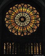Die Rosette im Inneren des Münsters.