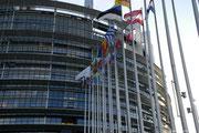 Ein Tag führte uns ins Europaparlament.