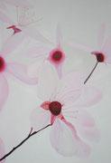 Japanische Blutpflaume 90x130 cm