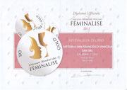 Donna Rosa 2013 - Medaglia d'Oro - Concorso Internazionale Femilise - Francia