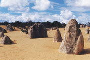 In den Pinnacles (Nambung NP)