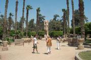 Wir sind in Memphis - sie gilt als die älteste Metropole Ägyptens und liegt 24 km südwestlich von Kairo in der Gegend Al-Badrashien.