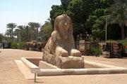 Die Sphinx von Memphis des Amenophis II. aus Alabaster.