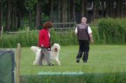 Fußlaufen mit Richtungs- und Positionswechsel