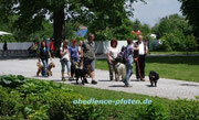 Im Stadtpark - Begegnungen mit anderen Tierarten