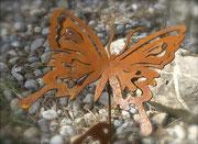 Schmetterling mit langen Flügel