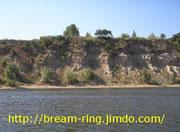 Правый берег Волги (лещ-кольцо)