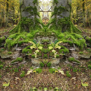 Spiegelung...Baumwächter mit geschlossenen Augen