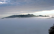Nebelstimmung am Feichtenberg